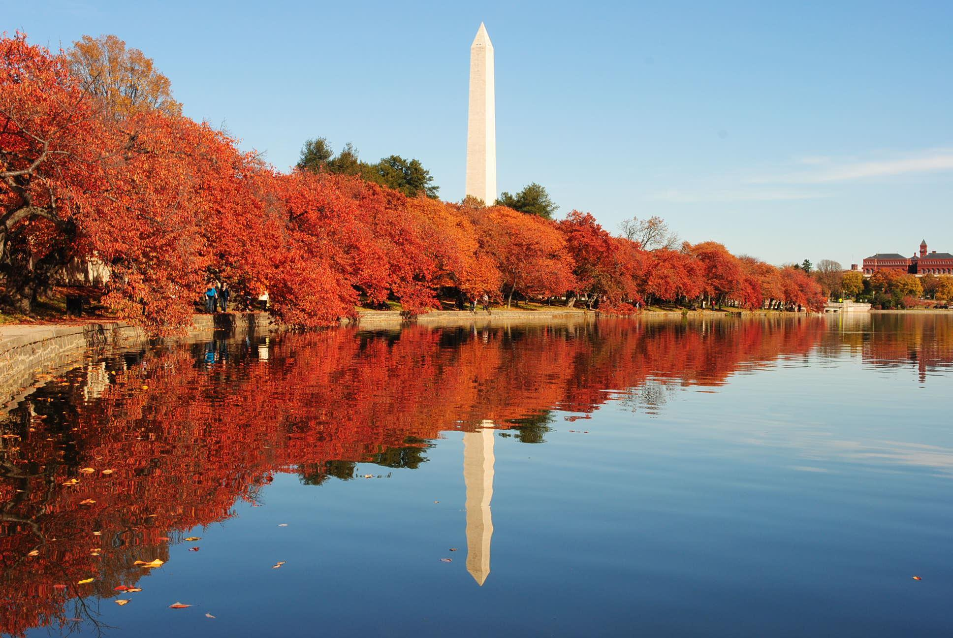 Tidal Basin in the Fall