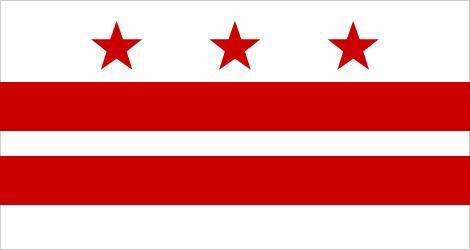 Flag Washington D.C.