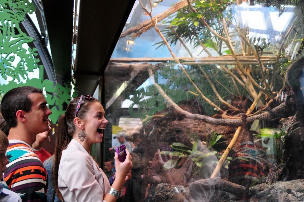 Student Enjoying the Shedd Aquarium